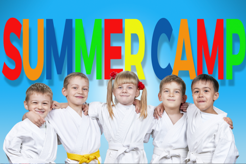 Martial Arts Summer-camp